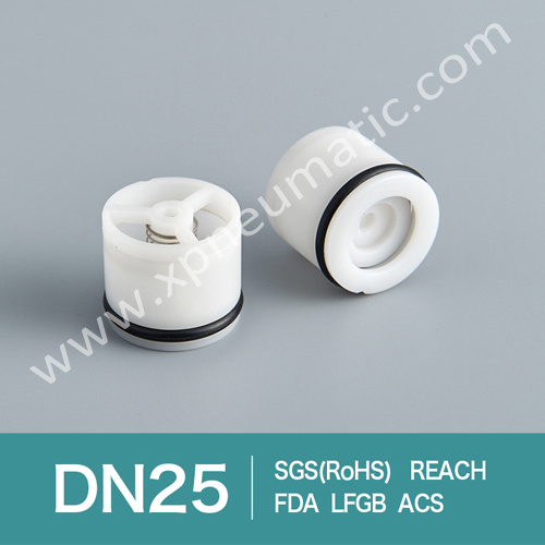 Back Flow Safety Valve Dn13